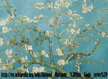 wiki_Almond_Blossoms copy