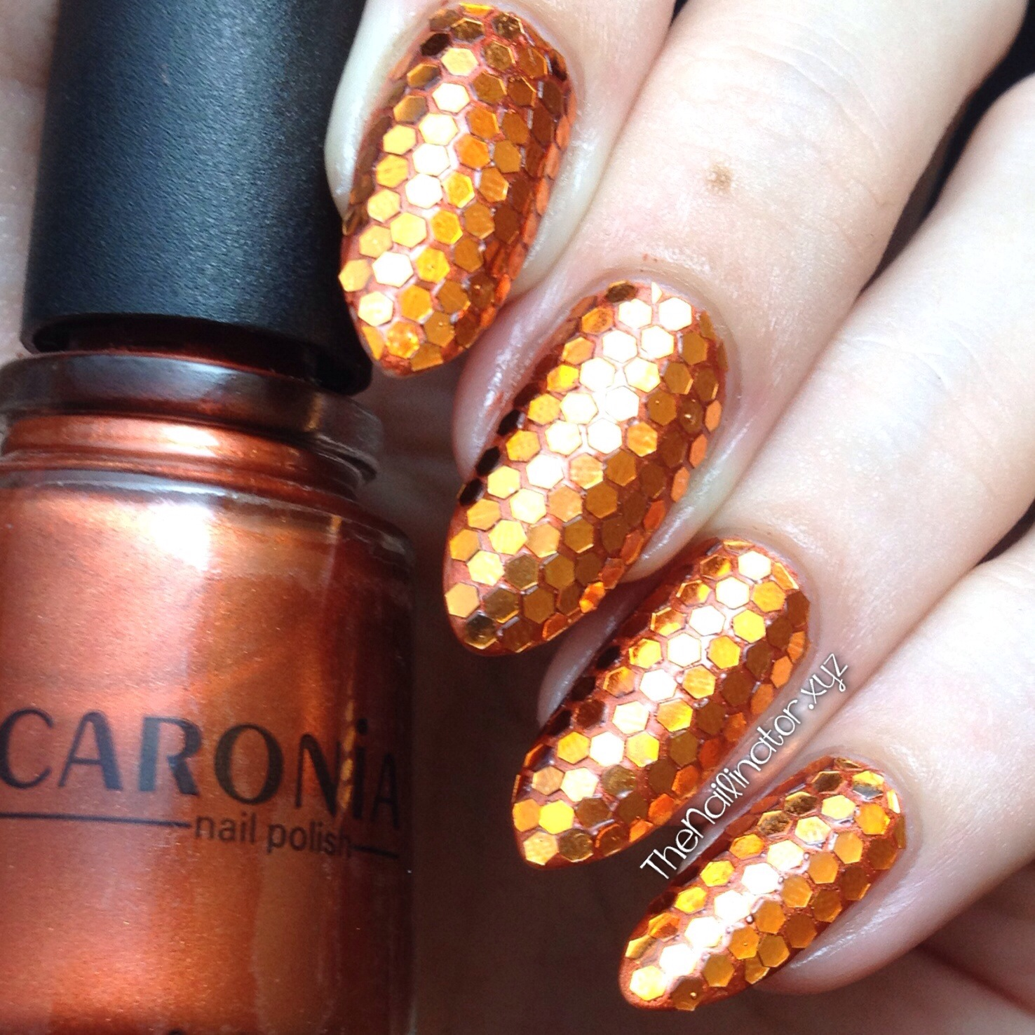 Hexagon glitter nail art image collections nail art and nail nail art supply review archives the nailinator orange hexagonal glitter over caronia bourre prinsesfo image collections prinsesfo Gallery